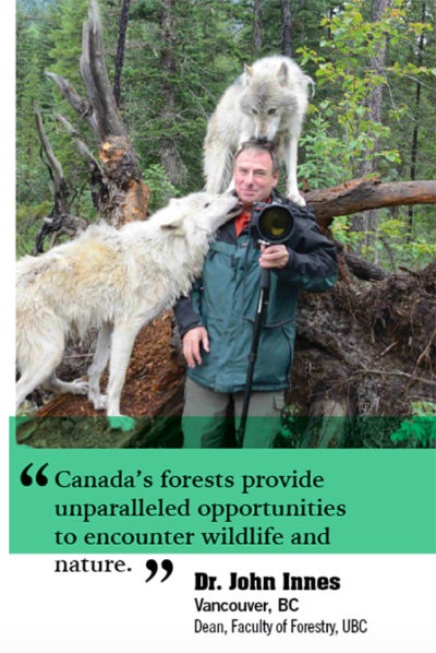 gregdubeau.com-CIF-Forest-Chronicle-Magazine-Website-06